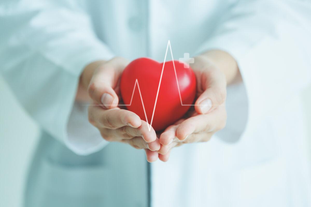 kardiolog-sanivitas